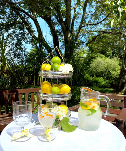 Ballyknocken-garden-lemonade