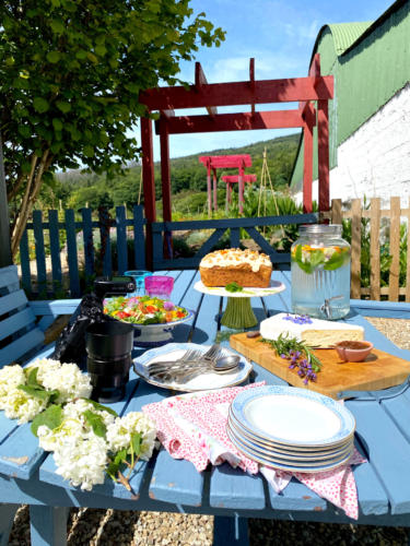 outdoor-dining-picnic-carrick